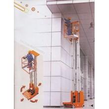 Arial Work Platform Dual Mast