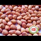 Kacang Tanah & Kacang Tanah Kupas