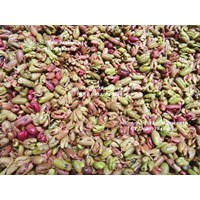 Sell Seeds And Cloves In Zanzibar Zanzibar Clove Seed Sprouts Are Super
