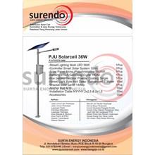 Package 36W LED Solar Powered PJU