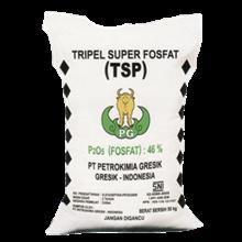 PUPUK Triple Super Phosphate ( TSP)