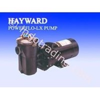 pompa 0.75 Hp Hayward