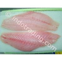 Daging Ikan Kerapu