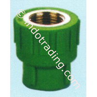 Sell Ppr Pipe Fitting Female Tee Asialing