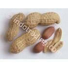 Minyak Kacang Tanah