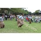Sell Fun Games Sack Race Village Elephant