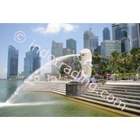 Sell Tour Singapore City
