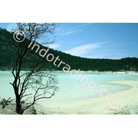 Sell Tour And Gathering White Crater Of Bandung
