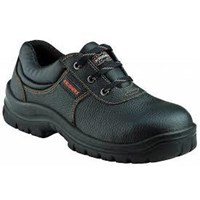 Sell Laceup Shoes with Padded Topline