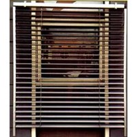 Outdoor venetian Blind