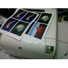 hp printer laserjet 1215 cheap Colour