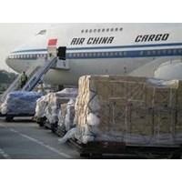 Cargo Import Ke Seluruh Indonesia