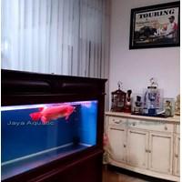 Aquarium Arowana - Kediaman Wakapolda Jatim2015