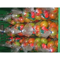 Jual Tomat Besar