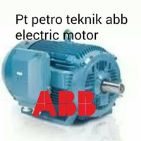 ABB ELECTRIC AC MOTOR 50 hz