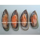 Green Mussels New Zealand
