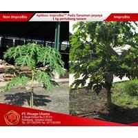 Sell Improbio Fertilizer Plant Papaya