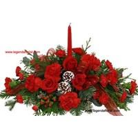 16 Bunga Natal -Christmas Flowers (001)