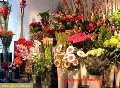 Jual 19 Bunga Plastik Harga Murah Tangerang Oleh Legenda