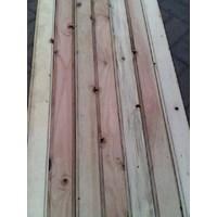 Jual Pinus untuk dekorasi