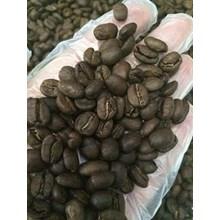 Kopi Luwak Robusta Roasted Bean