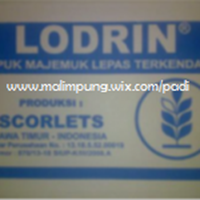 NPK TABLET (LODRIN)