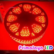Lampu Selang LED 3528 Merah