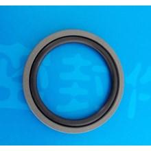 Glyd Rings, SPOG Rings, O Ring .