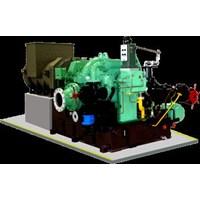 Multistage Steam Backpressure Turbine