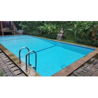 Bay-Smart 100 Non Chlorine Pool Sanitation