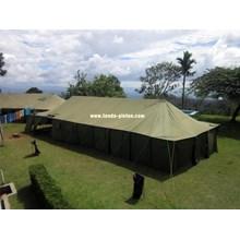 Tenda Pleton-TP003