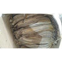 Sell Salted Fish
