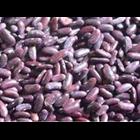 Jual Kacang Merah