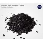Karbon Aktif - Arang Batok Kelapa (Coconut Shell Charcoal Activated Carbon)