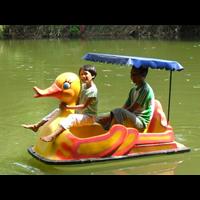 Water Mini Bike Model Duck