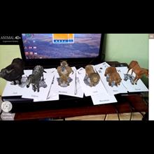 Kartu Animasi Zebra Animal 4D Bandung