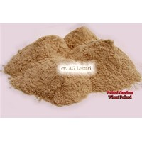Sell  Pollard Gandum ( Brend - Wheat Pollard) Pakan Ternak