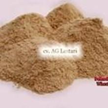 Makanan Ternak Pollard Gandum ( Brend - Wheat Pollard) Pakan Ternak 2