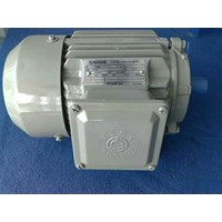 Jual Dinamo - Tatung induction motor 3phase