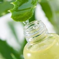 Jual Aloe Vera Extract