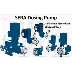 SERA Dosing Pump