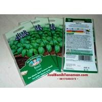 Jual Benih Daun Basil Sweet (Herb)