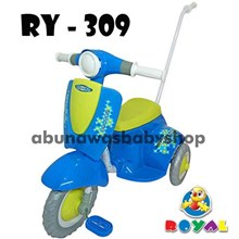 Royal Scooter Driving Usage
