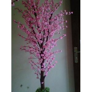 Jual Pohon Sakura Tiruan Harga Murah Malang Oleh PT Bunga