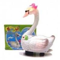 Jual Beautiful Swan Bertelur