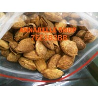 Jual MILKY BUTTER ROASTED