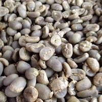 Jual Green Beans Toraja Arabica Minanga