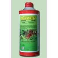 BOXER 200 EC
