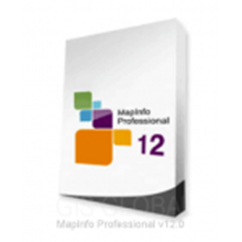 Software Mapinfo Professional