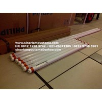 Sell Lampu LED Tube 18W Dan 10W Merk OSRAM